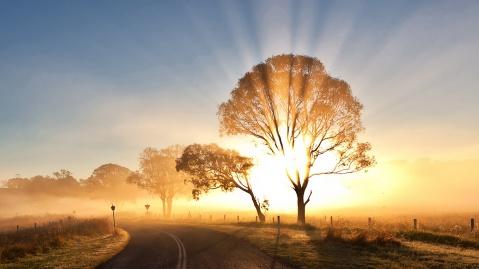 sunrise-misty